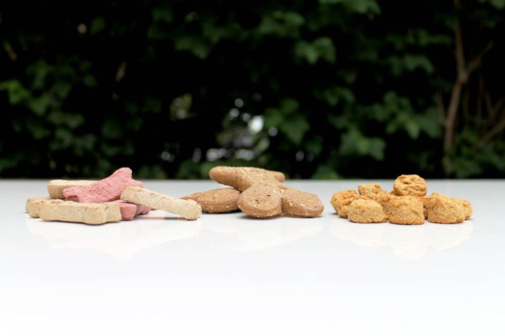 dog-biscuits-soft-chews